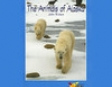 The Animals of Alaska: Rosen Real Readers (Unabridged)
