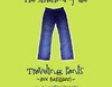 The Sisterhood of the Traveling Pants (Unabridged)