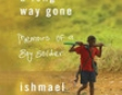 A Long Way Gone: Memoirs of a Boy Soldier (Unabridged)
