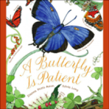 Butterfly Is Patient, A