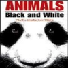 Animals: Black and White