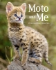 Moto and Me: My Years as a Wildcat's Foster Mom